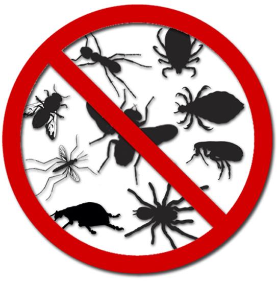 envira universal insektenspray 500ml spr hen fertig. Black Bedroom Furniture Sets. Home Design Ideas